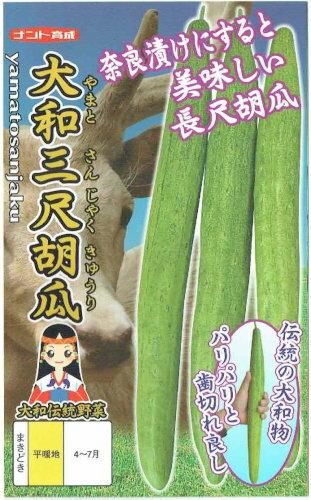 大和三尺胡瓜(種)