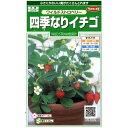 サカタのタネ 四季なりイチゴ 0.1ml【郵送対応】
