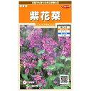 サカタのタネ 紫花菜 1ml【郵送対応】