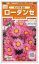 サカタのタネ ローダンセ 切り花用混合 4ml【郵送対応】