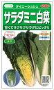 サカタのタネ 白菜 サラダミニ白菜 タイニーシュシュ 1.8ml【郵送対応】