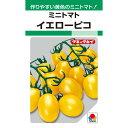タキイ種苗 ミニトマト イエローピコ 30粒【郵送対応】