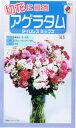 タキイ種苗 アゲラタム タイムレスミックス 0.1ml 【郵送対応】
