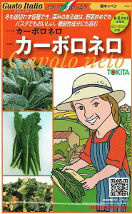 トキタ種苗 グストイタリア カーボロネロ (黒キャベツ) 約40粒 【郵送対応】