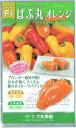 大和農園 フルーツパプリカ ぱぷ丸オレンジ 約8粒【郵送対応】