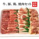 【送料無料】【☆4.73(10月19日現在)】定番焼肉セット...