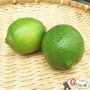 佐賀七山・福岡糸島の新鮮野菜 レモン1玉