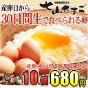 佐賀県産七山村の新鮮卵10個 七山たまご 濃厚卵黄 お取り寄...