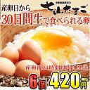 佐賀県産七山村の新鮮卵6個 七山たまご 濃厚卵黄 お取り寄せ・贈り物・ギフト・お中元・お歳暮・プレゼントへ