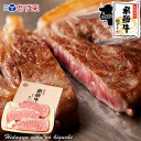 お歳暮 飛騨牛 サーロインステーキ 計500g(165g位×...