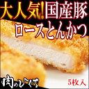 ひぐちの国産豚肉ローストンカツ120g×5入り 1袋