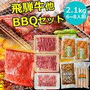 BBQ2.1kgセット 飛騨牛 国産豚肉 国産若鶏 ホルモン...