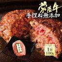 常陸牛100%ハンバーグ 100g 単品 自宅用 お試し 牛肉 ブランド牛 国産 和牛
