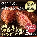 ハンバーグ ギフト 常陸牛100% 手捏ね 和牛 5個セット 無添加 送料無料 冷凍 牛肉