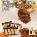自宅用 お肉屋さんが造るレトルトカレー 送料無料 10