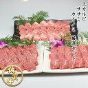 上カルビ ササミ カイノミ 国産ブランド 佐賀牛の 厳選セット 1.2kg 国産 和牛 特選