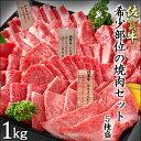 佐賀牛 希少部位焼肉セット1kg(ランプ200g・イチボ20...