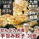 九州産 手作り 無添加 ギョウザ 30個 (鹿児島県産豚 九...