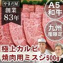 【ポイント10倍】九州産 黒毛和牛A5ランク みすじ 500...