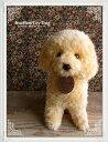 【トイプードル(成犬)クリーム ver.】日本製リアルな犬のぬいぐるみ◎簡易ラッピング(無料)でお届けします。