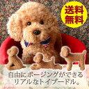 ぬいぐるみ 犬 リアル トイプードル【実物大トイプードルのぬいぐるみ(アプリコッ