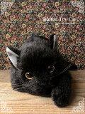 本物そっくり♪リアルな猫のぬいぐるみ【黒猫(成猫)open eye ver.】【N-DS-C】【猫のぬいぐるみ】