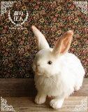 うさぎ ぬいぐるみ リアル HANSA《ユキウサギ(雪うさぎ)》【N-CN-R】【ウサギのぬいぐるみ】【小動物のぬいぐるみ】【無料ラッピング&カード】【誕生日】【プレゼント】