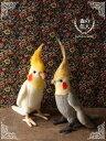 鳥 ぬいぐるみ リアル HANSA《オカメインコ》【N-CN-B】【鳥のぬいぐるみ】【無料ラッピング&カード】【鳥雑貨】【誕生日】【プレゼント】