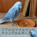マメルリハ リアル クリップホルダー《リアルなマメルリハインコのクリップホルダー》【N-MG】【鳥雑貨】【誕生日】【プレゼント】