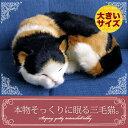 【本物そっくりに眠る三毛猫(大)のぬいぐるみ】パーフェクトペット|猫のぬいぐるみ|動くぬいぐるみ|誕生日|クリスマス|プレゼント|ギフト|お見舞い|ペットロス