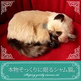 【本物そっくりに眠るシャム猫のぬいぐるみ】パーフェクトペット|猫のぬいぐるみ|動くぬいぐるみ|クリスマス|誕生日|プレゼント|ギフト|お見舞い【N-UC-C】