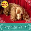 楽天ニニアンドキノ新商品《受注開始》6月5日から順次出荷予定です。【本物そっくりに眠るダックス(ロングコート)のぬいぐるみ】パーフェクトペット|犬のぬいぐるみ|動くぬいぐるみ|クリスマス|誕生日|プレゼント|ギフト|お見舞い【N-UC-D】