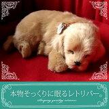 【本物そっくりに眠るレトリバーのぬいぐるみ】パーフェクトペット|犬のぬいぐるみ|動くぬいぐるみ|誕生日|クリスマス|プレゼント|ギフト|お見舞い|ペットロス