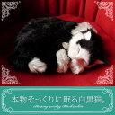 【本物そっくりに眠る白黒猫のぬいぐるみ】パーフェクトペット|猫のぬいぐるみ|動くぬいぐるみ|誕生日|クリスマス|プレゼント|ギフト|お見舞い|ペットロス