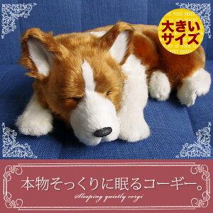 本物そっくりに眠るぬいぐるみパーフェクトペット【コ