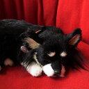 本物そっくりに眠るぬいぐるみパーフェクトペット【チワワ・ロング(ブラックタン)】リアル 犬 動く ぬいぐるみ ギフト プレゼント 誕生日 クリスマスお見舞い ペットロス
