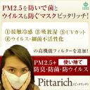 【エボラ出血熱対策】でマスコミの取材殺到PM2.5+防菌・防ウイルスマスクピッタリッチ耳かけゴムタイプ使い捨て【日本製】20枚【送料無料】代引き不可 超立体形状記憶ワイヤーfs04gm