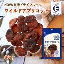 ショッピングフルーツ ノヴァ ドライフルーツ 有機 オーガニック 自然 NOVA 有機ドライフルーツ ワイルドアプリコット 80g