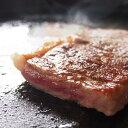 飛騨牛サーロインステーキ 2枚 約340g 化粧箱入 黒毛和牛 国産 飛騨牛 冷凍 進物 肉