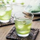 お茶 手軽なのに上品な味わいが楽しめる本格派 水出し緑茶 巨泉 京都