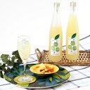 お酒 日本の新たな柑橘!お鍋にぴったり 日向へべすの美味しいお酒 2本セット 竹内酒造 滋賀県