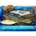 気仙沼 漁師さんの鮮魚セット〔約3~5kg※漁獲種類により異なります〕 一般社団法人 Fish Market 38 宮城県