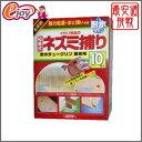 イカリ消毒の粘着式ネズミ捕りシート 10枚入 【イカリ消毒】 DIY