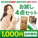 西尾製茶 お試し1000円ぽっきり4点セット(玄米珈琲 玄米コーヒー 粉末緑茶 粉茶)送料無料 1000円 ポッキリ