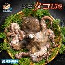 タコ たこ (生) 1匹 約1.5kg 天然タコ 香川県産 冷蔵  グルメ
