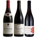 【ソムリエ厳選】ピノ好き集合!全てブルゴーニュピノノワール!3本セット 名門ルゥ家入り!6本で送料無料ワインセットブルゴーニュ赤赤ワインワインセットwine
