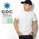 ジーディーシー GDC NILE tee レディース メンズ Tシャツ 半袖 半袖Tシャツ ロゴ おしゃれ かっこいい ストリート 大きいサイズ S M ホワイト 白 ミント gdc tシャツ