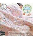 肌布団 ピーターラビットTM 綿100% タオル地 ガーゼ素材 リバーシブル ピンク系/ブルー系 シングル ニッセン nissen