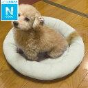 犬・猫用ペットベッド M(NクールT マル M GY) ニトリ 【送料有料・玄関先迄納品】