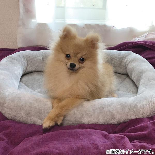 犬・猫用ペットベッド(NウォームH シカク M GY)